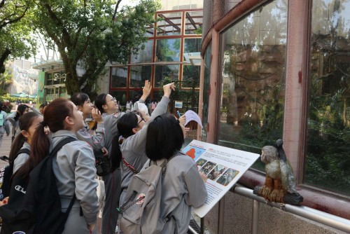 P6 Geography Discovery Day – A visit to the Seak Pai Van Park