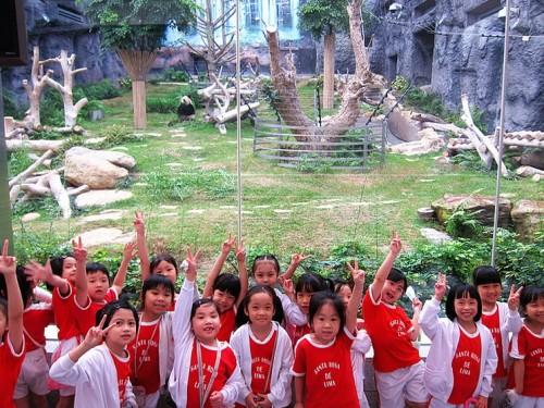 23 May_P1 Students_Macau Giant Panda Pavilion